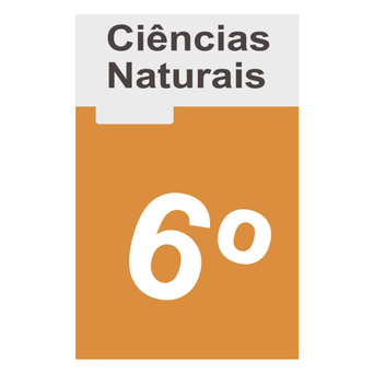 TEXTO EDITORES Manual 100% VIDA! (Ciências Naturais; 6º Ano)